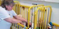 Fanni a 4. baba, akit a kecskeméti csecsemőmentő inkubátorban hagytak