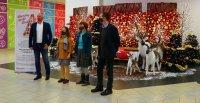 Indul a karácsonyi jótékonykodás Kecskeméten: megnyitott az Adománypont a Malomban