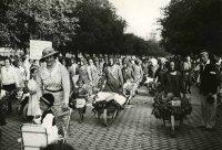 Egyszer volt Kecskeméten kutyavásár - 10 érdekesség a Hírös Hét történetéből