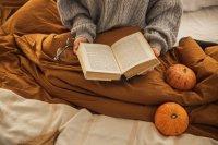 Kölcsönözz könyvet a kecskeméti könyvtárból a bezárás alatt is!